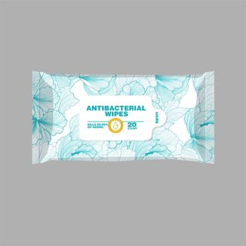 Alcohol Free Antibacterial Wet Wipes In Resealable Pouch - 20 count